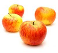 Jabłoń Topaz sadzonki