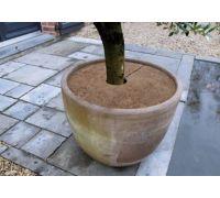 Osłona przed zimnem na korzenie z maty kokosowej - śr. 60 cm - 3 szt.