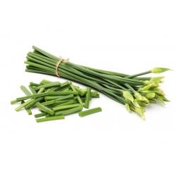 Szczypiorek czosnkowy - warzywo, zioło, roślina ozdobna - 300 nasion