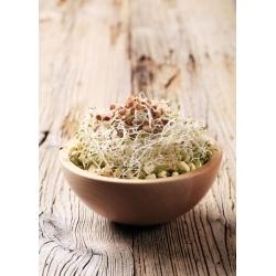 Nasiona na kiełki - mieszanka chińska