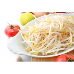 Nasiona na kiełki - Fasola Mung - 840 nasion