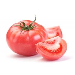Pomidor gruntowy malinowy - Faworyt - owoce do 0,5 kg! - 263 nasion