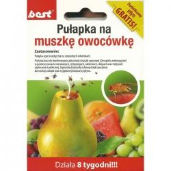 Pułapka na muszki owocówki - 8 tygodni skuteczności - Best