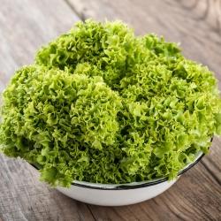Sałata liściowa karbowana - Lollo Bionda - 1200 nasion