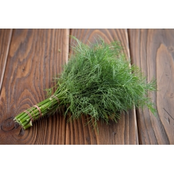 Koper ogrodowy Superducat - 2800 nasion