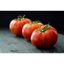 Pomidor Marmande - 200 nasion