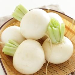 Rzepa biała - Snowball - 2500 nasion