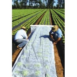 Agrowłóknina wiosenna - zdrowe plony dzięki skutecznej ochronie - 1,6 x 20,0 m