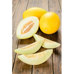 Melon Oliwin
