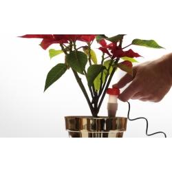 IDOZ - innowacyjny dozownik wody do roślin doniczkowych - 2 szt.