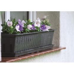 Doniczka zewnętrzna, ziołownik, skrzynka balkonowa Agro - Brąz - 50 cm
