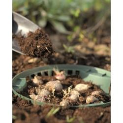 Okrągły kosz do uprawy cebul kwiatowych - 31,5 cm