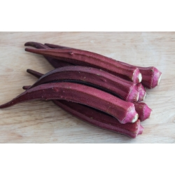 Okra, Ketmia jadalna Burgundy - 30 nasion