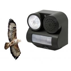 Odstraszacz ptaków, kun i innych dzikich zwierząt - błyskowo-dźwiękowy - odgłosy drapieżnych ptaków