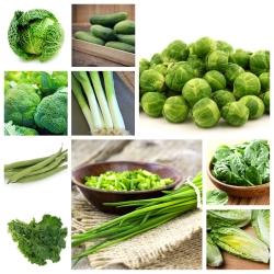 Zielone warzywa - zestaw 10 gatunków