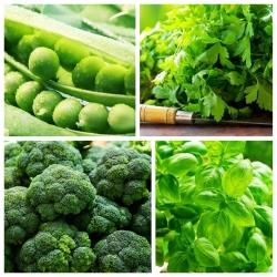 Warzywa do uprawy współrzędnej - Zestaw 2 - 4 gatunki nasion