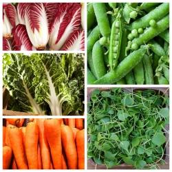 Superfoods - bomby witamin z własnego ogórdka - Zestaw 1 - 5 odmian nasion warzyw