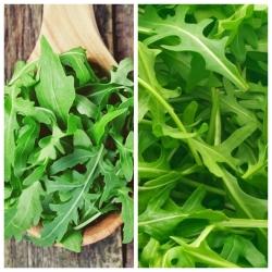 Rukola - zestaw 2 odmian nasion warzyw