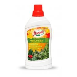 Nawóz jesienny do roślin zimozielonych - intensywne wybarwienie nawet zimą - Florovit - 1 l