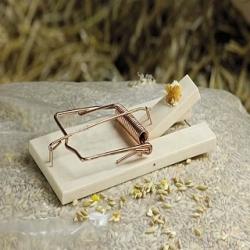 Drewniana pułapka na szczury