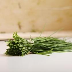 BIO Szczypiorek - Certyfikowane nasiona ekologiczne - 850 nasion