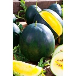 Arbuz żółty Kawon - Janosik - 14 nasion