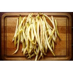 BIO Fasola szparagowa karłowa Berggold - żółta - Certyfikowane nasiona ekologiczne