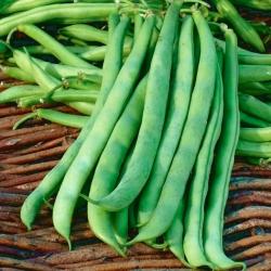 Fasola szparagowa Malwina - zielone strąki