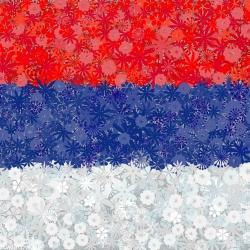 Serbska flaga - zestaw 3 odmian nasion kwiatów