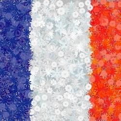 Francuska flaga - zestaw 3 odmian nasion kwiatów