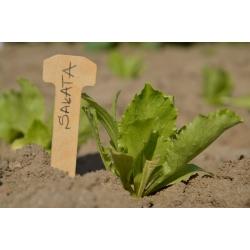 Etykiety drewniane do podpisywania roślin - ekologiczne - 100 szt.