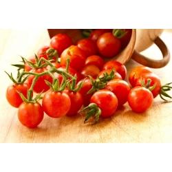 Pomidor czereśniowy Idyll - 80 nasion
