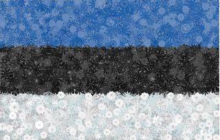 Estońska flaga - zestaw 3 odmian nasion kwiatów