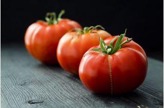 Pomidor Marmande nasiona