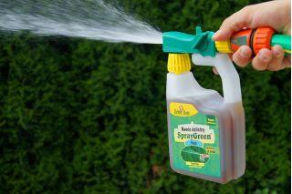 SprayGreen - nawóz dolistny do tui, żywotników w formie konewki - gotowy do użycia - Zielony Dom - 950 ml