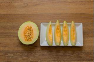 Melon cukrowy Charentaise - 90 nasion
