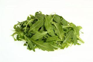 Baby Leaf - Rukola