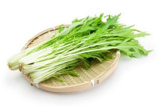 Mizuna zielona - 1000 nasion
