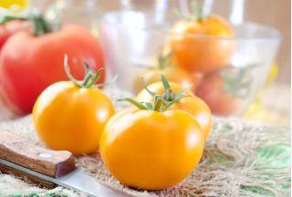 Pomidor Złoty Ożarowski - 80 nasion