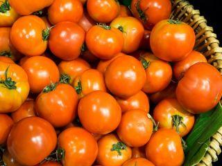 Pomidor koktajlowy - Venus