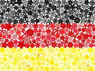Niemiecka flaga - zestaw 3 odmian nasion kwiatów