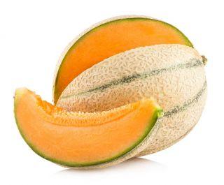 Melon MALAGA F1 - 13 nasion