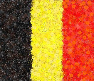 Belgijska flaga - zestaw 3 odmian nasion kwiatów