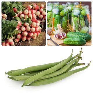 Warzywa do uprawy współrzędnej - Zestaw 9 - 3 gatunki nasion