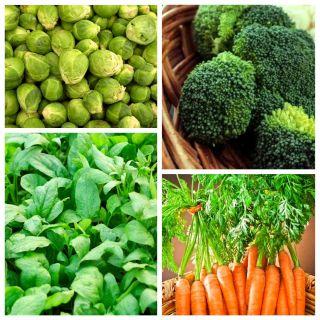 Warzywa poprawiające stan skóry - zestaw 4 odmian nasion
