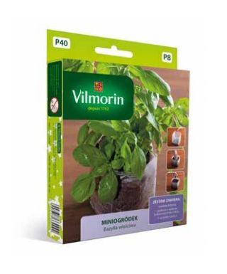 Miniogródek - Bazylia właściwa - mini zestaw do uprawy w domu - 650 nasion