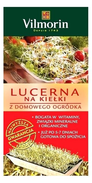 Lucerna - Kiełkownik - domowy ogródek z kiełkami